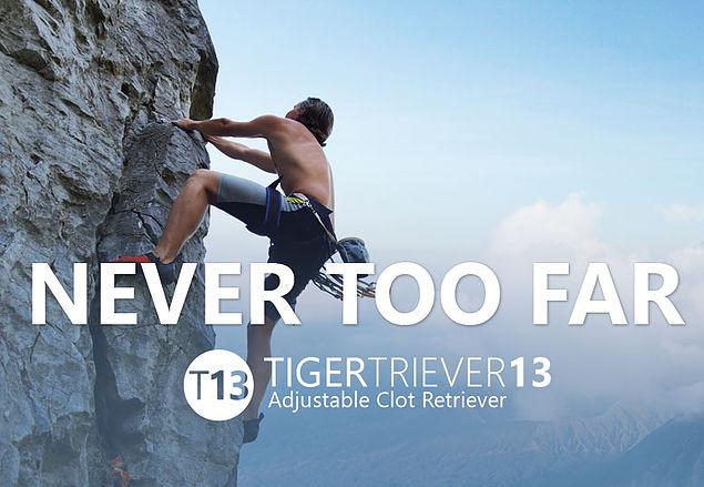tiger _triever